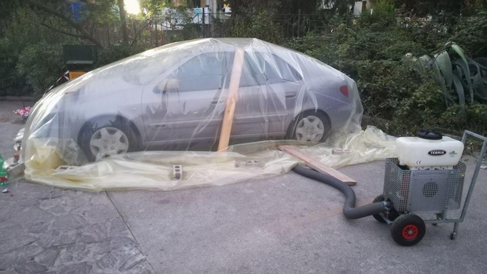 Eliminazione delle vespe in auto